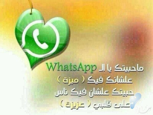 ما حبيتك يا whatsapp